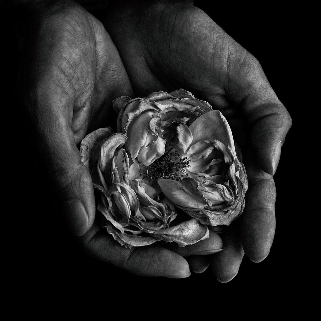 Betina La Plante. Портрет 14